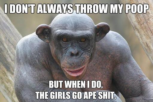 Monkey Throwing Poop