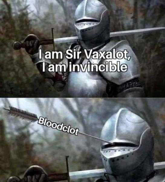 Sir Vaxalot The Invincible